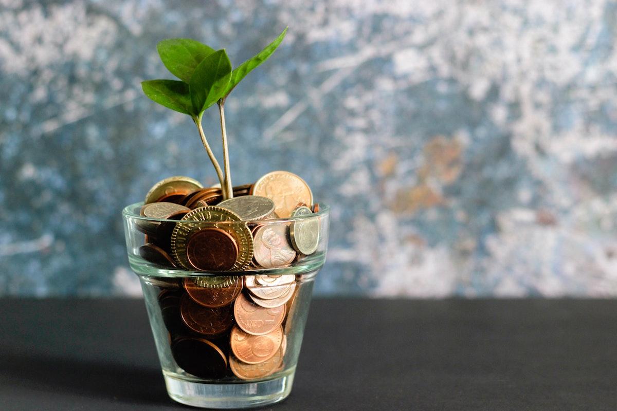 Blog Payment Methods Money Tree